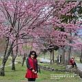 武陵農場巡櫻-2017-02-163.jpg
