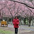武陵農場巡櫻-2017-02-188.jpg