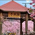 武陵農場-2017-02-291.jpg