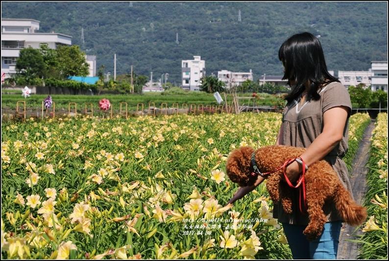 嘉德萱草園-2017-04-09.jpg