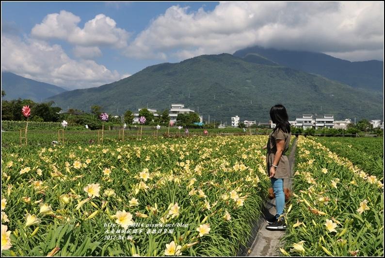 嘉德萱草園-2017-04-10.jpg