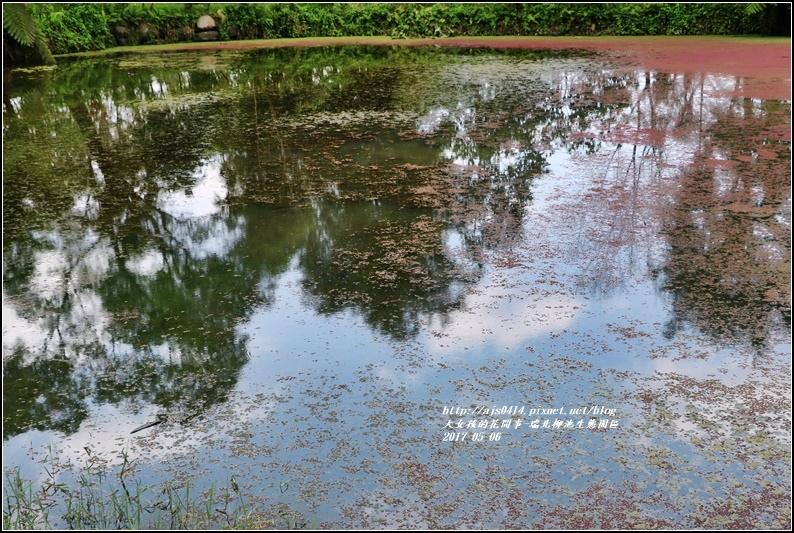 柳池生態園區-2017-05-12.jpg