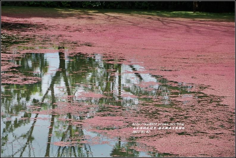 柳池生態園區-2017-05-16.jpg