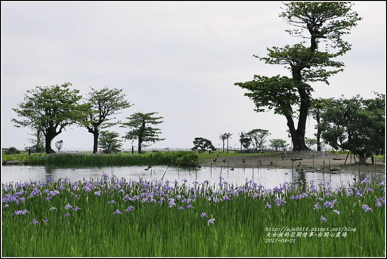 台開心農場-2017-04-28.jpg