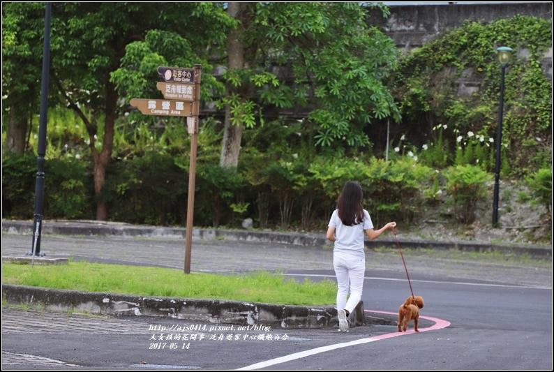 鐵炮百合花(秀姑巒溪泛舟中心)2017-05-20.jpg