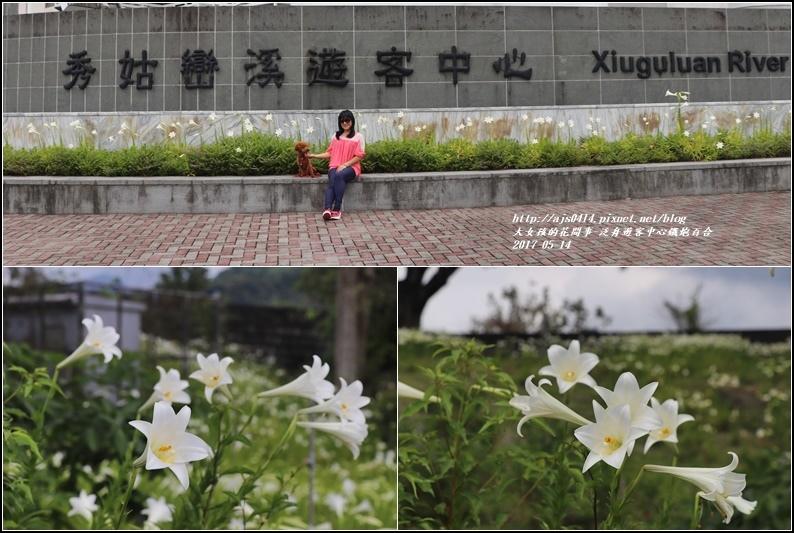 鐵炮百合花(秀姑巒溪泛舟中心)2017-05-22.jpg