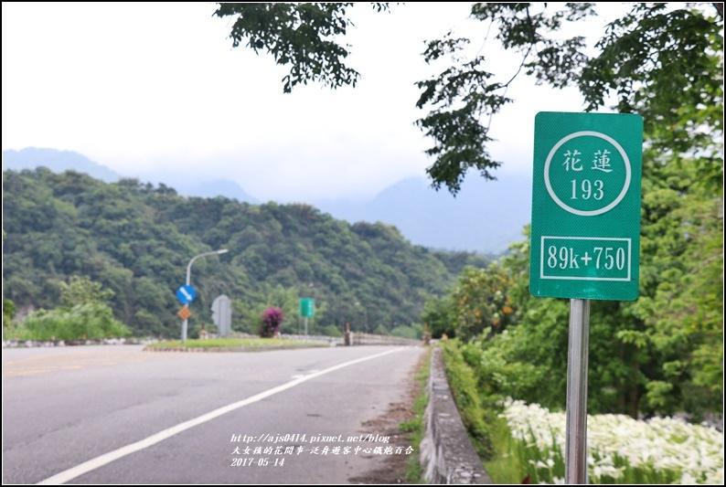 鐵炮百合花(秀姑巒溪泛舟中心)2017-05-25.jpg
