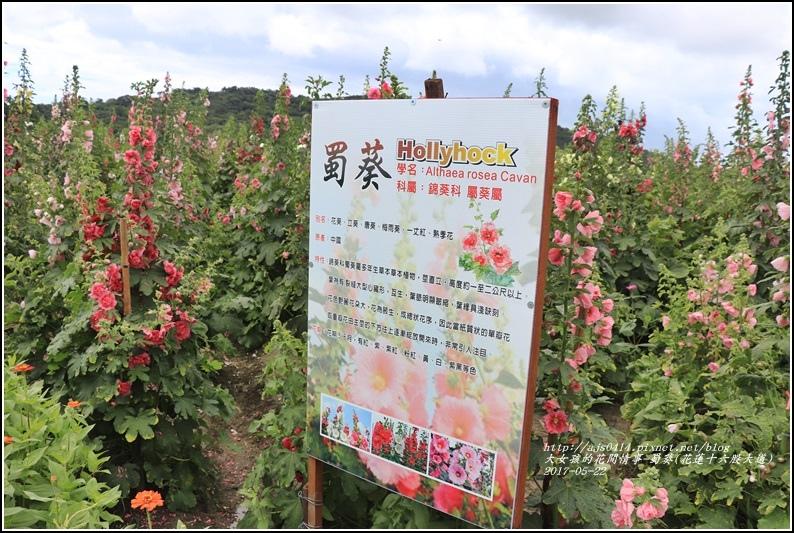 蜀葵(花蓮十六股大道)-2017-05-01.jpg