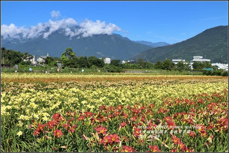 嘉德萱草園-2017-06-01.jpg