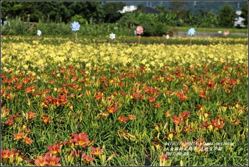 嘉德萱草園-2017-06-05.jpg