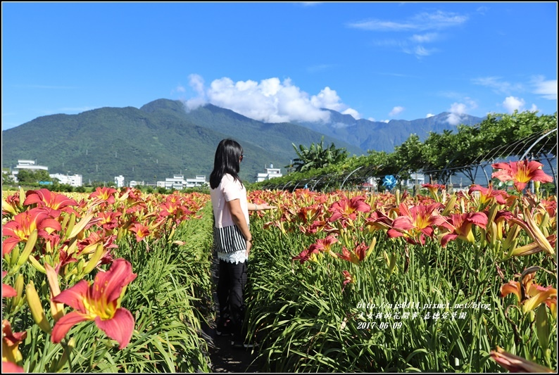 嘉德萱草園-2017-06-11.jpg