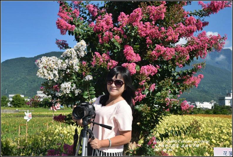 嘉德萱草園-2017-06-22.jpg