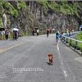 親不知子天空步道-2017-07-02.jpg