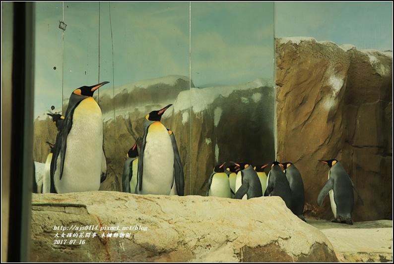 木柵動物園-2017-07-07.jpg