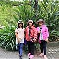 木柵動物園-2017-07-24.jpg