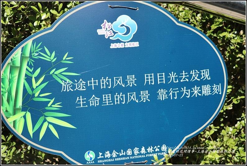 上海佘山國家森林公園-2017-07-09.jpg