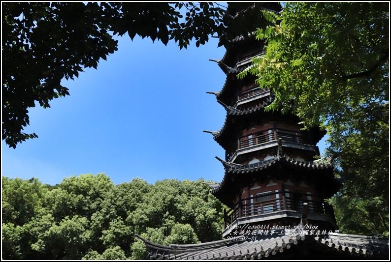 上海佘山國家森林公園-2017-07-17.jpg
