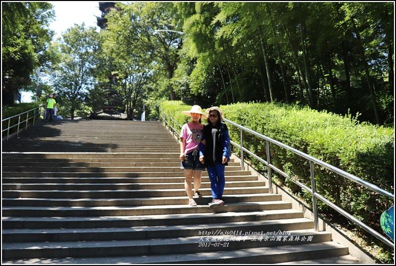 上海佘山國家森林公園-2017-07-20.jpg