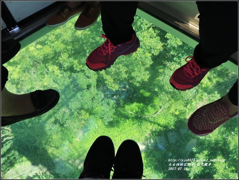 貓空纜車-2017-07-19.jpg
