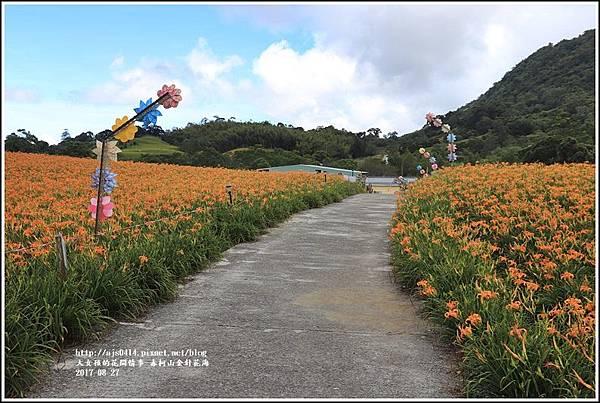 赤柯山金針花季-2017-08-17.jpg