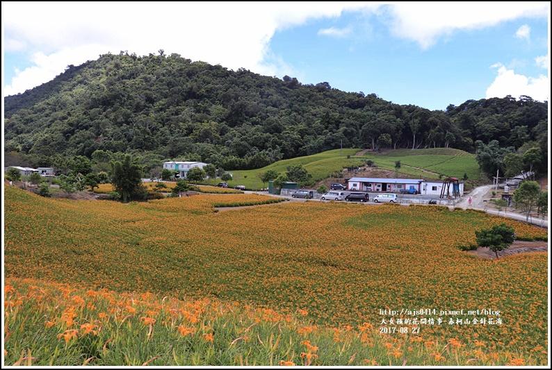 赤柯山金針花季-2017-08-31.jpg
