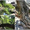 蘇州留園-2017-07-12.jpg