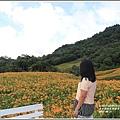 赤柯山金針花季-2017-08-87.jpg
