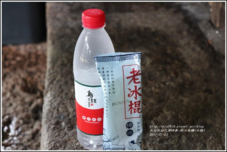 浙江烏鎮(水鄉)-2017-07-49.jpg