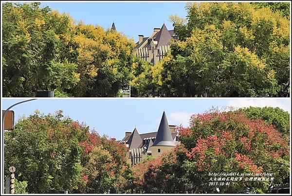 瑞穗溫泉路台灣欒樹-2017-10-10.jpg