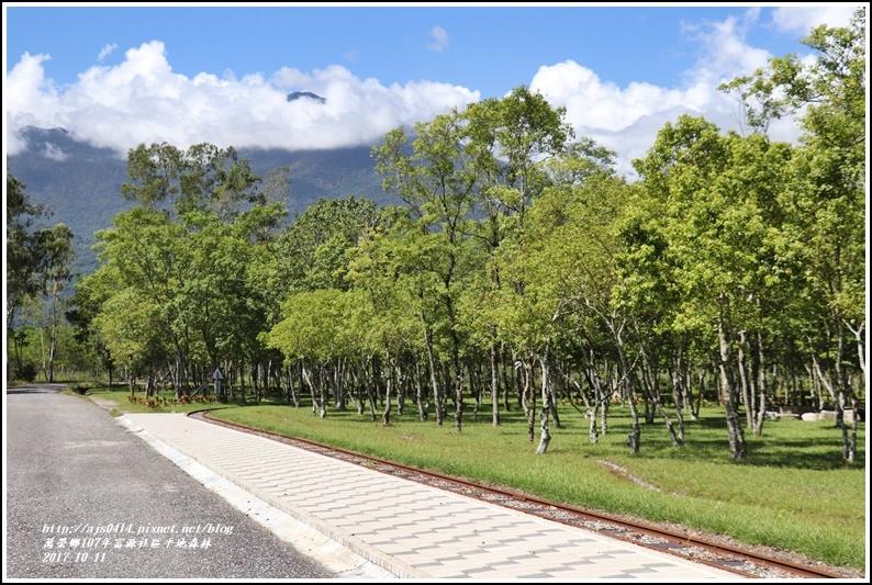 富興社區平地森林-2017-10-06.jpg