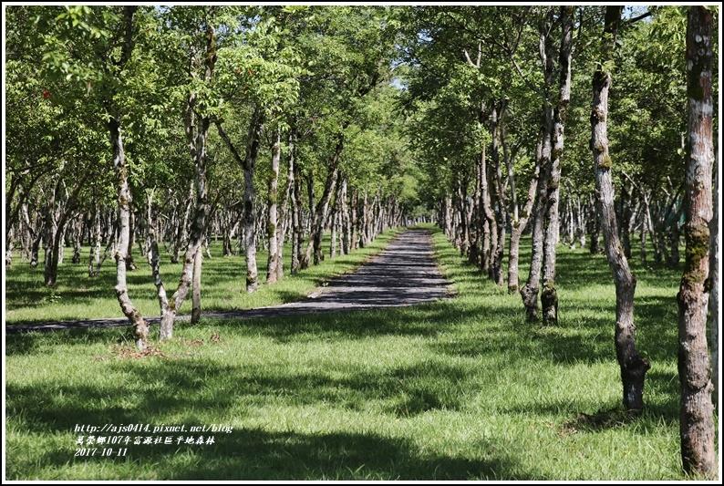 富興社區平地森林-2017-10-07.jpg