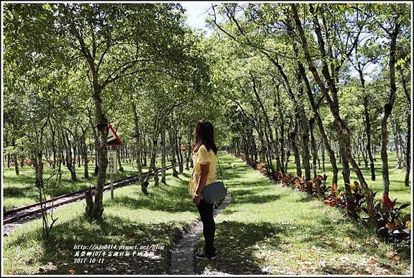 富興社區平地森林-2017-10-16.jpg