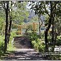 富興社區平地森林-2017-10-30.jpg