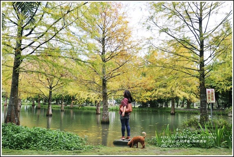 鈺展園藝(落羽松森林)-2017-11-04.jpg