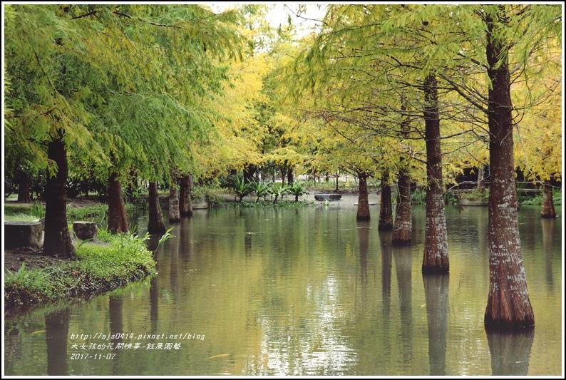 鈺展園藝(落羽松森林)-2017-11-42.jpg