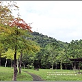 馬太鞍溪橋旁公園-2017-11-11.jpg