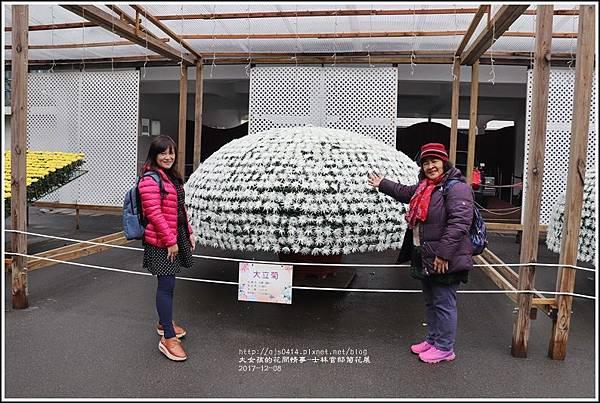 士林官邸菊花展(人像)-2017-12-04.jpg