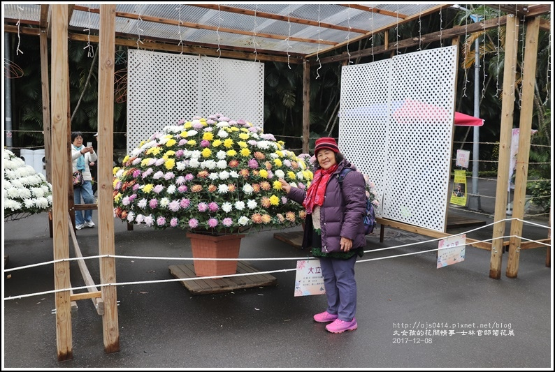 士林官邸菊花展(人像)-2017-12-05.jpg