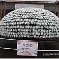 士林官邸菊花展-2017-12-08.jpg