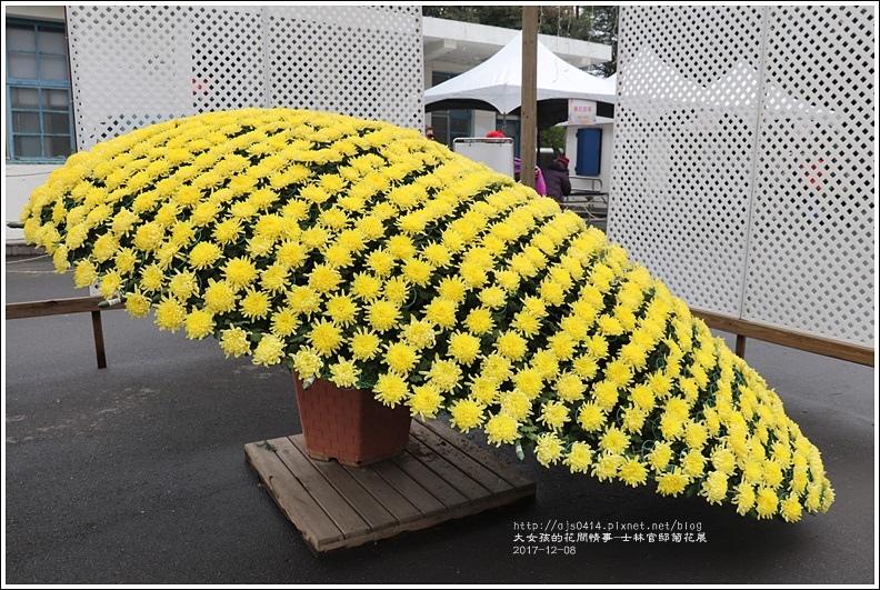 士林官邸菊花展-2017-12-13.jpg