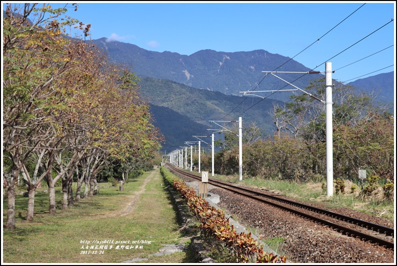 鹿野瑞和車站-2017-12-03.jpg