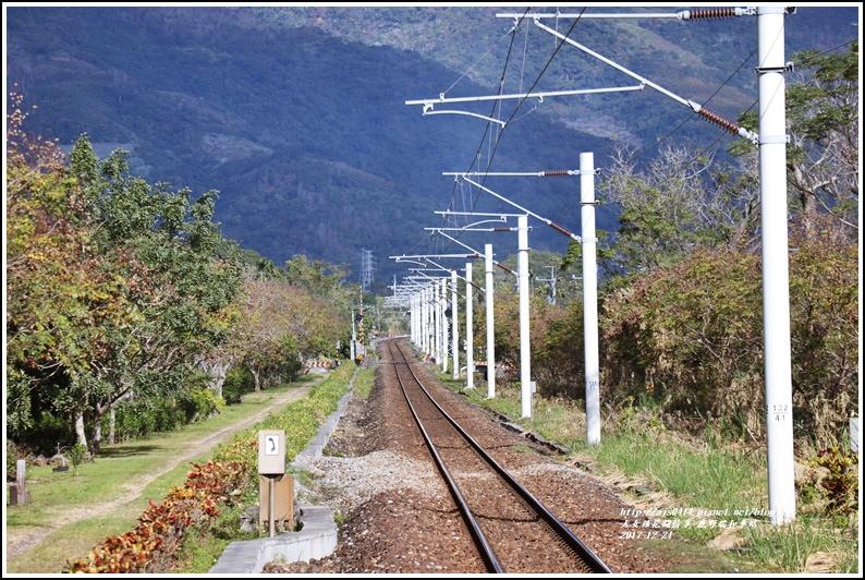 鹿野瑞和車站-2017-12-04.jpg