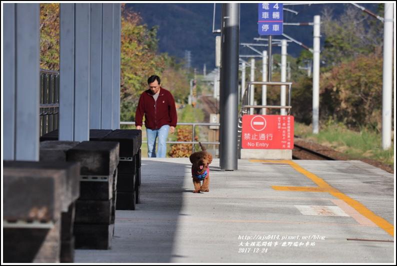 鹿野瑞和車站-2017-12-10.jpg