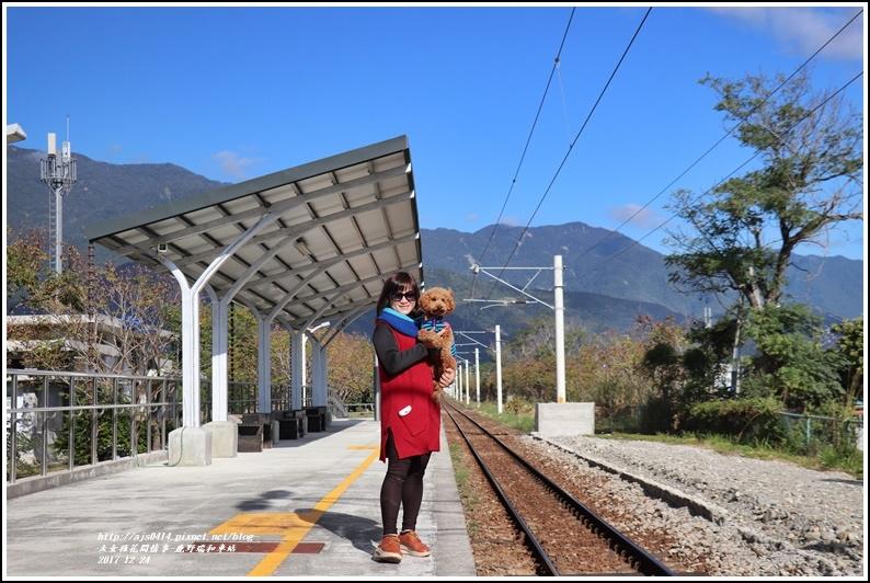 鹿野瑞和車站-2017-12-13.jpg