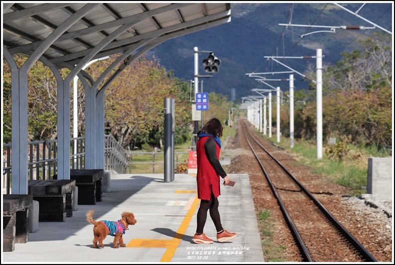 鹿野瑞和車站-2017-12-14.jpg