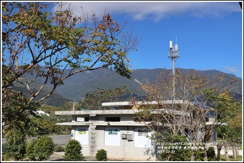 鹿野瑞和車站-2017-12-15.jpg