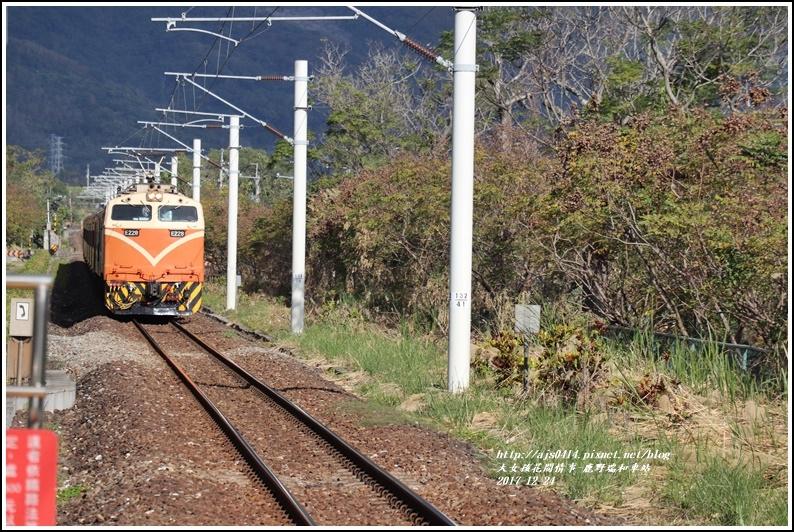 鹿野瑞和車站-2017-12-18.jpg