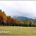 光復森林公園-2017-12-01.jpg