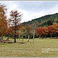 光復森林公園-2017-12-05.jpg