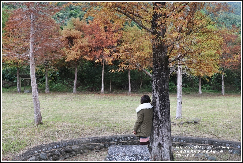 光復森林公園-2017-12-09.jpg